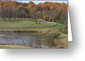 Wood Fences Greeting Cards - Fall Scenic Of Horse Farm And Pond Greeting Card by George Grall