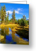 National Mixed Media Greeting Cards - Fall Season at Clear Creek - Scenic Idaho Greeting Card by Photography Moments - Sandi