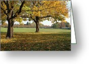 Quite Greeting Cards - Fall season in a park Portland OR. Greeting Card by Gino Rigucci