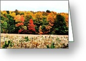 Digitalized Digital Art Greeting Cards - Fall Tree Line and Field Greeting Card by Marsha Heiken