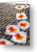 Cobblestone Greeting Cards - Fallen Autumn  prints Greeting Card by Carlos Caetano