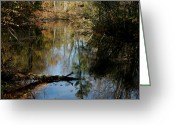Fall River Scenes Greeting Cards - Fallen Beauty Greeting Card by LeeAnn McLaneGoetz McLaneGoetzStudioLLCcom