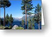 Fallen Leaf Greeting Cards - Fallen Leaf Lake Area With Pine Trees In Foreground, Lake Tahoe, California, Usa Greeting Card by Ellen Skye