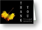 Fallen Leaf Greeting Cards - Fallen Leaf Thank You Card Greeting Card by Dianne Liukkonen
