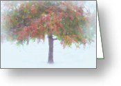 Changing Colors Greeting Cards - FALL..ing Snow Greeting Card by Kathy Jennings