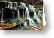 Cascading Greeting Cards - Falls into Place Greeting Card by Jim Speth