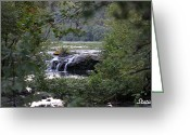Static Studios Greeting Cards - Falls Through Trees Greeting Card by Static Studios