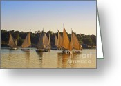 Nile River Greeting Cards - Faluccas on the Nile Greeting Card by Mary Machare