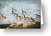 Kathy Jennings Photographs Greeting Cards - Family Outing Greeting Card by Kathy Jennings