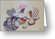 Seashell Picture Painting Greeting Cards - Family Portrait Greeting Card by Eve Riser Roberts