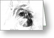 Terriers Greeting Cards - Fancy - head study Greeting Card by Norma Rowley