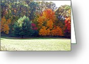 Outdoors Greeting Cards - Fantastic Fall Greeting Card by Aimee L Maher