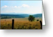 Barbed Wire Fences Photo Greeting Cards - Far Afield  Greeting Card by Ross Powell
