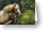 Green Pasture Greeting Cards - Farm - Horse - White Stallion Greeting Card by Mike Savad