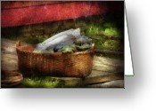 Washing Greeting Cards - Farm - Laundry  Greeting Card by Mike Savad