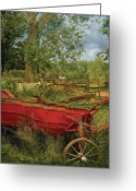 Reds Greeting Cards - Farm - Tool - In the country II Greeting Card by Mike Savad