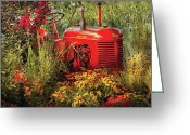 Reds Greeting Cards - Farm - Tractor - A pony grazing Greeting Card by Mike Savad