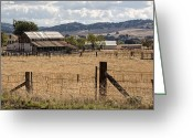 Fence Greeting Cards - Farm and Fence Greeting Card by Peter Tellone