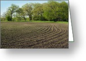 Tom Biegalski Greeting Cards - Farm field scene Greeting Card by Tom Biegalski