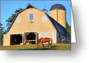 Old Photo Greeting Cards - Farm Greeting Card by Mitch Cat