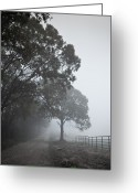Dirt Road Greeting Cards - Farm Road Greeting Card by 2BDesign