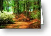 Path Greeting Cards - Favorite Path Greeting Card by Lois Bryan