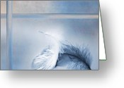 Blau Greeting Cards - Feather Greeting Card by Renata Vogl