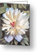 Ken Greeting Cards - Feathery Flower Greeting Card by Ken Powers