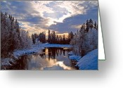 Johannessen Greeting Cards - February Reflections Greeting Card by Torfinn Johannessen