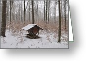 Feeding Greeting Cards - Feed box in winterly forest Greeting Card by Matthias Hauser