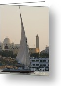 On-the-look-out Greeting Cards - Felucca on the Nile Greeting Card by Darcy Michaelchuk