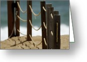 Kitty Greeting Cards - Fence Along the Beach Greeting Card by Julie Niemela