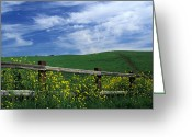 Clouds Framed Prints Greeting Cards - Fence and Flowers Greeting Card by Kathy Yates