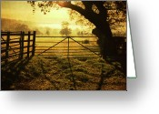 Fence Greeting Cards - Fence At Sunset Greeting Card by Matthew Fleming