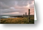 Barbed Wire Greeting Cards - Fence In Ireland Greeting Card by Danielle D. Hughson