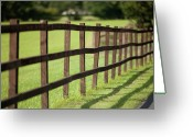 Fence Greeting Cards - Fence In Sunshine Greeting Card by Peter Chadwick LRPS