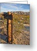Barbed Wire Greeting Cards - Fence Post and Barbed Wire Greeting Card by Peter Tellone