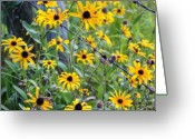 Susan Greeting Cards - Fence Row Flowers Greeting Card by Pete Hellmann