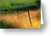 Fence Row Greeting Cards - Fence Row Greeting Card by Michael L Kimble