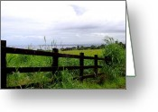 Big Island Greeting Cards - Fenced In Greeting Card by Deborah  Crew-Johnson