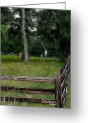 Split Rail Fence Greeting Cards - Fenced In Field Greeting Card by EricaMaxine  Price