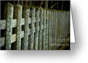 Old Wooden Fence Greeting Cards - Fenced In Greeting Card by Sebastian Musial