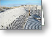 Sand Fences Photo Greeting Cards - Fences Shadows and Sand Dunes Greeting Card by Carol Senske