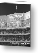 Green Monster Greeting Cards - Fenway Park Greeting Card by Lauri Novak