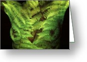 Loving Self Greeting Cards - Fern Greeting Card by Arla Patch