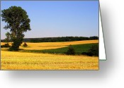 Debbie Johnson Greeting Cards - Field Flow Greeting Card by Deborah  Crew-Johnson