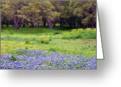 Texas Bluebonnets Greeting Cards - Field of Blues Greeting Card by Bill Morgenstern