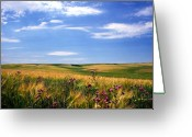 Featured Landscape Art Greeting Cards - Field of Dreams Greeting Card by Kathy Yates