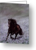 Horses Pastels Greeting Cards - Field of Dreams Greeting Card by Kim McElroy