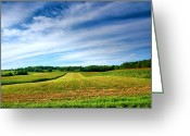 Wide Angle Photo Greeting Cards - Field of Dreams Two Greeting Card by Steven Ainsworth